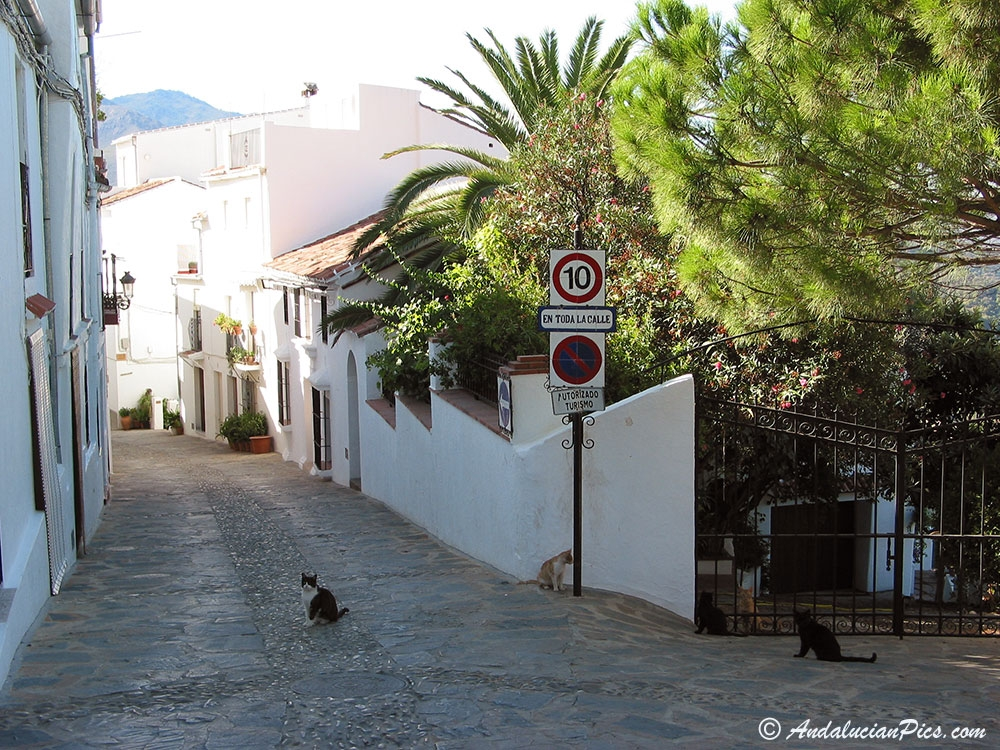 Andalucian White Village