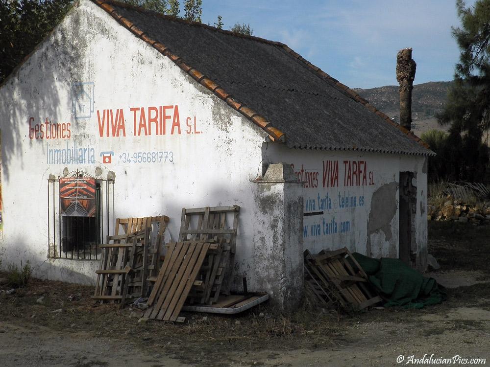 Between Tarifa and Bolonia