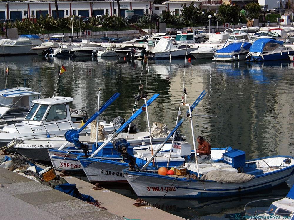 Estepona Port Fishing