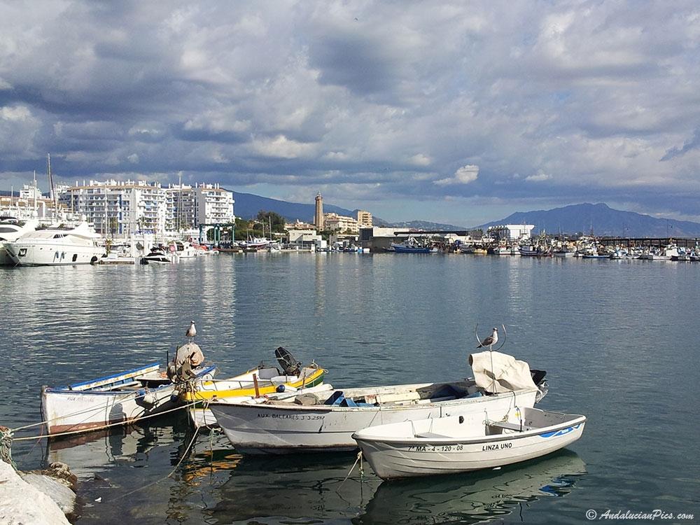 Estepona bateaux