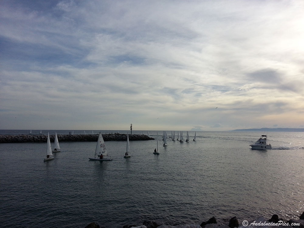 Sailing school Estepona
