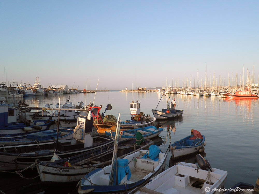 Fishing port Estepona