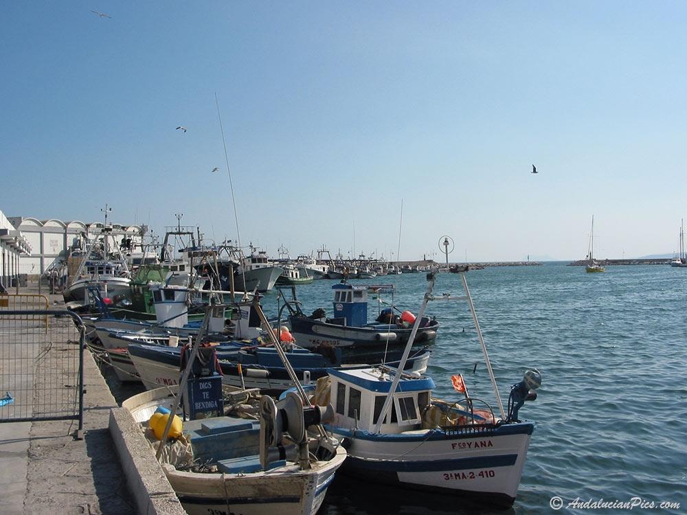 Port de peche Estepona
