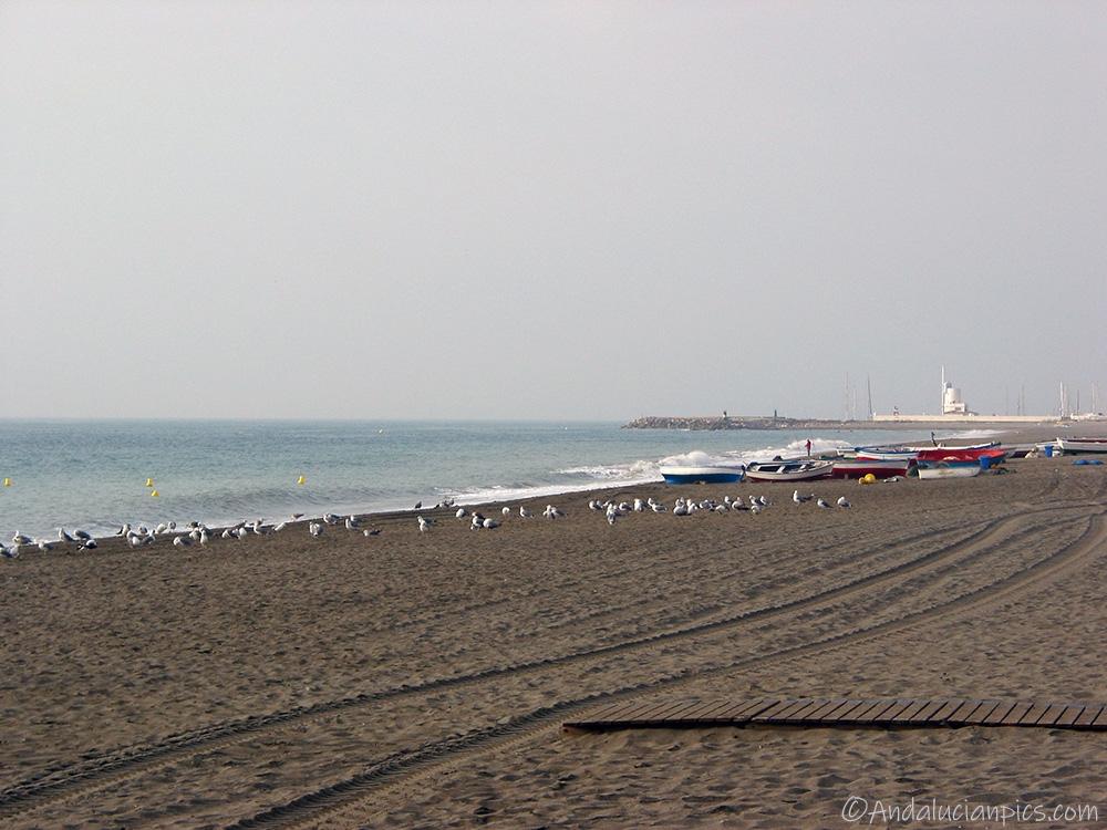Puerto Duquesa beaches